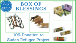 Box of Blessings: July 2017 – Africa
